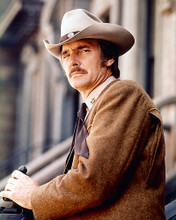 This is an image of 244209 Dennis Weaver Photograph & Poster