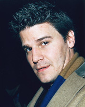 This is an image of 246372 David Boreanaz Photograph & Poster