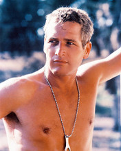 This is an image of 210278 Paul Newman Photograph & Poster