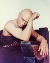 This is an image of 223930 Yul Brynner Photograph & Poster