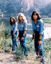 This is an image of 223945 Charlie's Angels Photograph & Poster