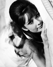 This is an image of 169592 Audrey Hepburn Photograph & Poster