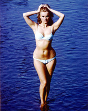 This is an image of 226114 Barbara Bouchet Photograph & Poster