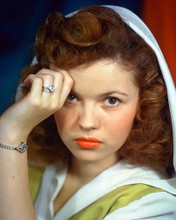 This is an image of 227115 Shirley Temple Photograph & Poster
