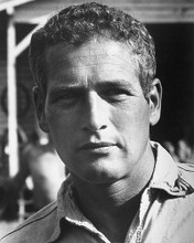 This is an image of 171183 Paul Newman Photograph & Poster