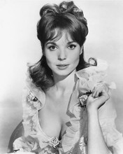 This is an image of 171197 Elsa Martinelli Photograph & Poster