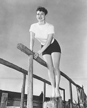 This is an image of 171204 Ava Gardner Photograph & Poster