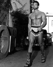 This is an image of 171335 Steve Reeves Photograph & Poster