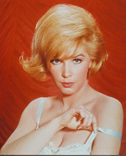 This is an image of 218774 Stella Stevens Photograph & Poster