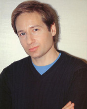 This is an image of 248633 David Duchovny Photograph & Poster