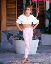 This is an image of 248644 Stefanie Powers Photograph & Poster