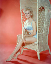 This is an image of 249096 Sheree North Photograph & Poster