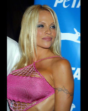 This is an image of 249664 Pamela Anderson Photograph & Poster