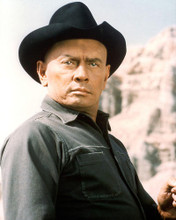 This is an image of 250108 Yul Brynner Photograph & Poster