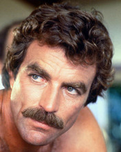 This is an image of 250406 Tom Selleck Photograph & Poster