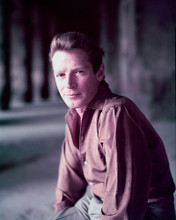 This is an image of 251850 Richard Basehart Photograph & Poster