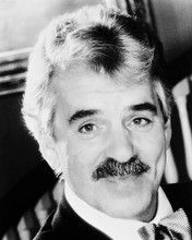 This is an image of 167980 Dennis Farina Photograph & Poster