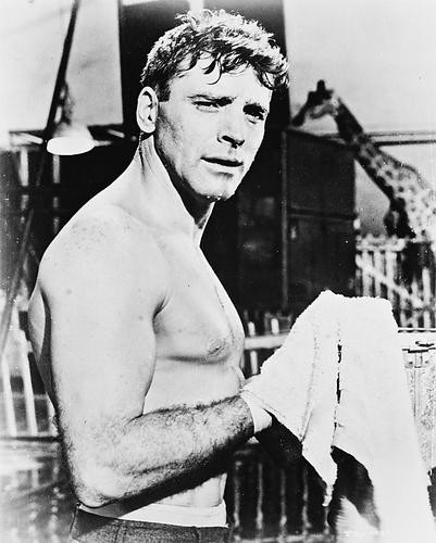 This is an image of 168320 Burt Lancaster Photograph & Poster
