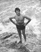 This is an image of 172113 Oliver Reed Photograph & Poster