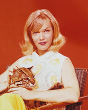 This is an image of 232739 Anne Francis Photograph & Poster