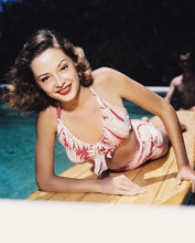This is an image of 234374 Jane Greer Photograph & Poster
