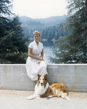 This is an image of 253315 June Lockhart Photograph & Poster