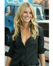 This is an image of 254615 Gwyneth Paltrow Photograph & Poster