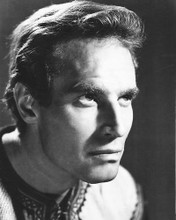 This is an image of 172153 Charlton Heston Photograph & Poster