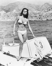 This is an image of 172183 Raquel Welch Photograph & Poster