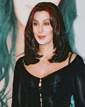 This is an image of 236668 Cher Photograph & Poster