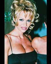 This is an image of 237455 Pamela Anderson Photograph & Poster
