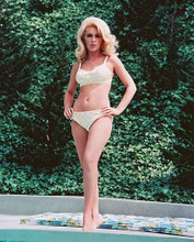 This is an image of 237733 Stella Stevens Photograph & Poster