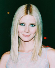 This is an image of 238512 Gwyneth Paltrow Photograph & Poster