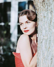 This is an image of 238788 Joanne Dru Photograph & Poster