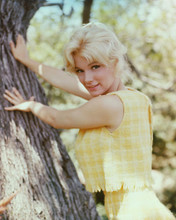 This is an image of 255381 Yvette Mimieux Photograph & Poster