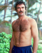 This is an image of 255442 Tom Selleck Photograph & Poster