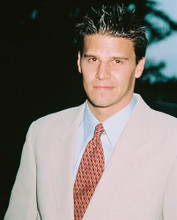 This is an image of 239950 David Boreanaz Photograph & Poster