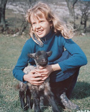 This is an image of 240956 Hayley Mills Photograph & Poster