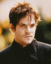 This is an image of 243620 Stephen Dorff Photograph & Poster
