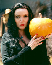 This is an image of 255717 Carolyn Jones Photograph & Poster
