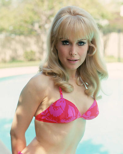 This is an image of 256419 Barbara Eden Photograph & Poster