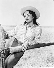 This is an image of 170336 Elizabeth Taylor Photograph & Poster