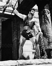 This is an image of 170385 Steve Reeves Photograph & Poster