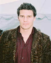 This is an image of 245962 David Boreanaz Photograph & Poster