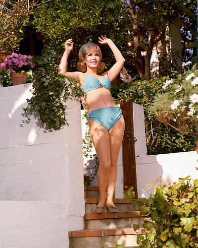 This is an image of 258037 Debbie Reynolds Photograph & Poster