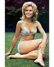 This is an image of 258258 Suzanna Leigh Photograph & Poster
