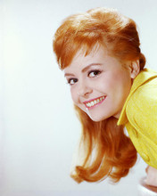 This is an image of 258802 Deborah Walley Photograph & Poster