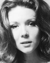 This is an image of 174066 Diana Rigg Photograph & Poster