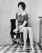 This is an image of 174507 Linda Thorson Photograph & Poster