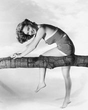 This is an image of 173493 Vera Miles Photograph & Poster
